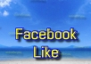 add 100 Real and Active Facebook likes to your fan page without admin access