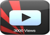 Give You 3000+Real Human Youtube Views+10 Likes+Comments