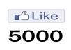make quick and safe 5000 facebook likes for your page, i can give you 500k likes for your page