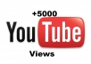 give you 5000 real and unique views to your video to YouTube without passwords