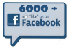 add 6000+ facebook likes to any of your page