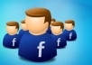 *****give you 50+ genuine Facebook likes for your fan page 