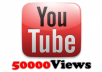 give you 50,000 youtube views to any video