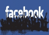 1.500 Genuine High Quality REAL Facebook Fan Page Likes