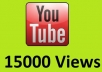 give u 15,000+ youtube views fastly to your video