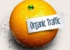 ****improve Your Google Organic Traffic By Sending Real Visitors To Your Website