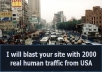 blast your website with 2000 real human traffic just