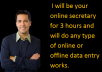 be your online secretary for 3 hours and will do any type of online or offline data entry works.