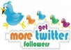 add 15000+ Twitter followers to your page, have good picture and profile, no need password within 20 hours