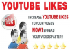 give you 100 REAL youtube likes on your video