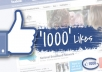 I will give 1000+ Real likes to your Facebook fan page