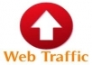 give you a software that you got 4000 to 20,000 visitors daily for your website, adsense safe visitors