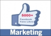 Get you 8000+ Real Human Likes To your Facebook FanPage