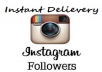Give You 1,000+ High Quality Instagram Likes Or Followers Instant Delievery