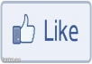 Give You 2000 FACEBOOK Likes Guaranteed On Your Fans Page Without ID Password  