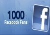 add 1000 High Quality USA Facebook Likes to your fanpage