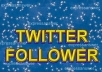 ADD 3000 REAL AND ACTIVE TWITTER FOLLOWERS MOSTLY FROM USA IN HOURS