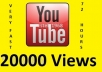 give you 20000 youtube views, 15+ likes , 30 subscribers!!!!