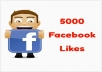 add 5000+ facebook likes to your page