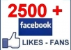 add 2500 facebook likes to your fan page PERMANENT 