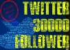 provide you 30000+ ║Real looking twitter follower║NO BOTS║NO ADMIN ACCESS║NO HIDDEN CHARGES║