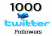 add 1000 Twitter Followers to your profile within 24 hours
