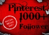 LEVEL 3 USER provide 1000+ permanent Pinterest follower Within 24 hrs