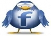 Give you 575+ Facebook likes,100% real work Guarantees,only