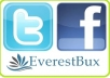 give you 300 facebook likes+ 300 twitter followers