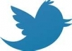 Provide GUARENTEED 40,000 TWITTER Followers To Your Any 2 Twitter Account Within Few Hours 20000x2=40000 