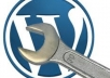install wordpress with theme and plugin on your server ..@