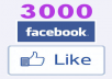 give 3000+ High Quality Active Real Permanent Facebook Likes or Fans to your facebook fan Page, all likes deliver within 1 day