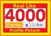 give 4000+ High Quality Active Real Permanent Facebook Likes or Fans to your facebook fan Page, all likes deliver within 1 day !!!!!