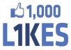 give 1500+ High Quality Active Real Permanent Facebook Likes or Fans to your facebook fan Page, all likes deliver within 1 day !!!!