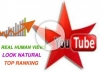 send 1000 Real YOUTUBE Views + 50 Likes + 50 Subscribers + 50 Favorites + 10 Comments To Your YouTube Video!!!!