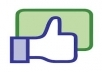 Give You 100 Real Facebook Likes Fan Page