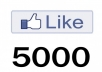give 5000+ Facebook Likes or Fans