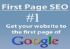 undertake an seo audit on your website and provide you with a step by step report to get you ranked quickly for