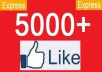 get you 5000 to 5500 Real looking [PERMANENT] facebook likes or fans to your facebook fanpages, all likes deliver within 24 hours