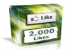 provide you with 2000 USA likes in your facebook fanpage within 24 hours