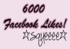 provide you with 6000 likes in your facebook fanpage within 24 hours
