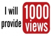 give you over 1000 Real YOUTUBE views + 30 youtube likes + 10 Favorites + 3 subscribersfor your video