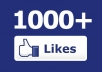 provide You 1000+ USA Facebook Likes or Subscribers