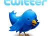 add 25000+ real twitter followers within 10 days no need for admin access