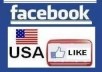 provide 300 real USA facebook likes for your fanpage within 48 hour only