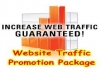 Drive 20000 Visitors To Your Site and Blog For A Month