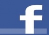 add you 252+ facebook likes 