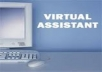 your virtual Assistant for 3 hours