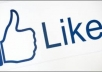 give You Guranteed 3000+ Real Facebook Likes for you facebook fanpage