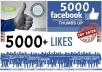 give 5000+ real looking facebook likes or fans to your fanpage